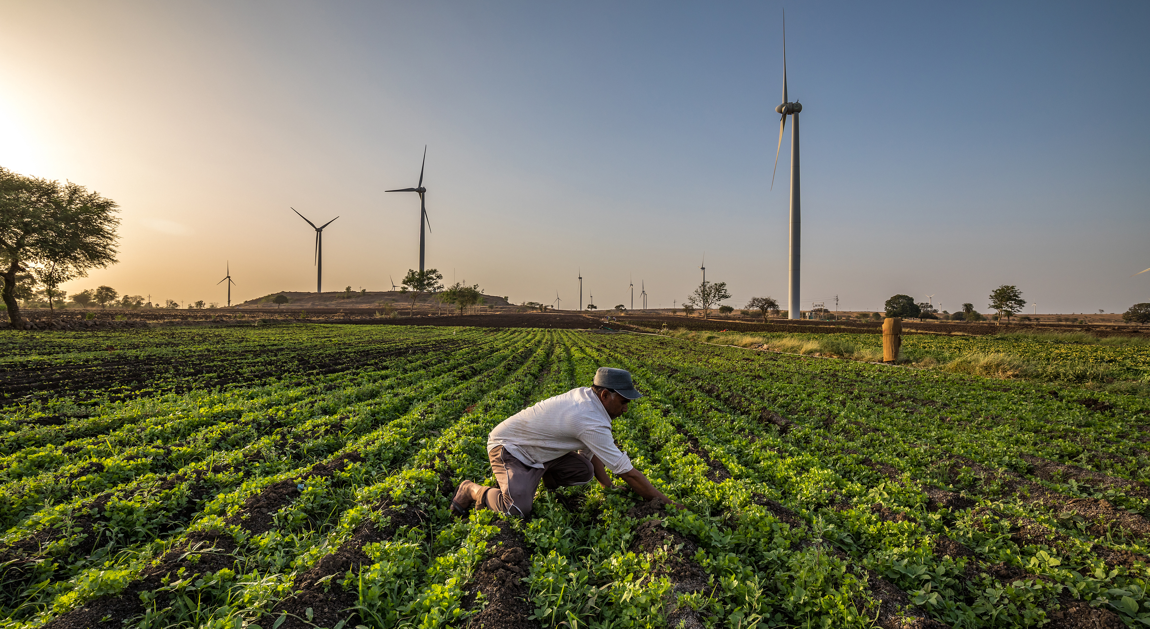 "Wind Vision Photo Competition Winners Local Impact  ""An Indian farmer working in his field next to a Wind turbine in Dhar. picture taken in Dhar district of Madhya Pradesh state of India."""